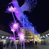 CHRISTMAS LIGHTS, BRUNSWICK SQUARE 007