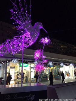 CHRISTMAS LIGHTS, BRUNSWICK SQUARE 008