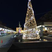CHRISTMAS LIGHTS, BRUNSWICK SQUARE 009