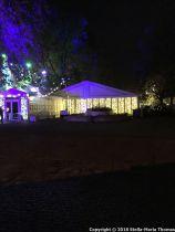 CHRISTMAS LIGHTS, CORAM FIELDS 001