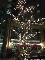CHRISTMAS LIGHTS, COVENT GARDEN 004