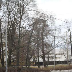 HELSINKI PANORAMA BUS TOUR 151