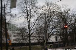 HELSINKI PANORAMA BUS TOUR 153