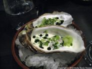 NATURA, OYSTER, SMOKED CREAM AND SALTED CUCUMBER 010
