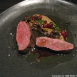 NATURA, VENISON FROM INKOO, LINGONBERRIES AND MUSHROOMS FROM SIPOO 012