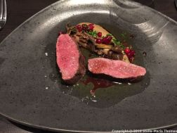NATURA, VENISON FROM INKOO, LINGONBERRIES AND MUSHROOMS FROM SIPOO 013