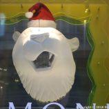 HELSINKI CHRISTMAS WINDOWS 016