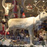 HELSINKI CHRISTMAS WINDOWS 019