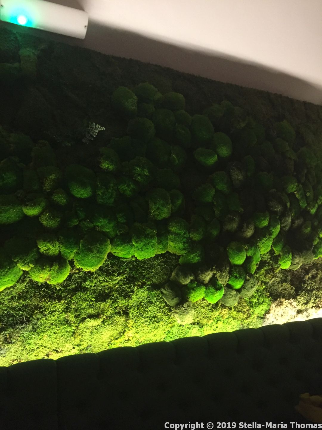FRENCH AFFAIRE, MOSS WALL 002