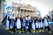 LONDON WINTER RUN 2019 PENGUINS 001