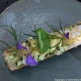 FROG BY ADAM HANDLING,RAZOR CLAMS 008