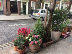 LONDON WALK, EUSTON TO BOROUGH MARKET VIA WOOD STREET 013