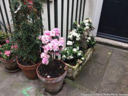 LONDON WALK, EUSTON TO BOROUGH MARKET VIA WOOD STREET 014