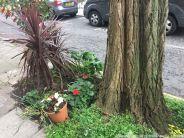 LONDON WALK, EUSTON TO BOROUGH MARKET VIA WOOD STREET 022
