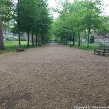 LONDON WALK, EUSTON TO BOROUGH MARKET VIA WOOD STREET 033