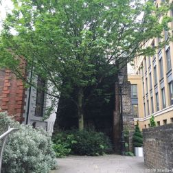 LONDON WALK, EUSTON TO BOROUGH MARKET VIA WOOD STREET 118