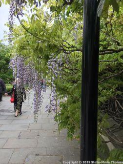 LONDON WALK, EUSTON TO BOROUGH MARKET VIA WOOD STREET 157