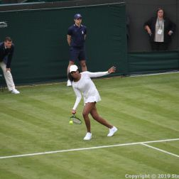 WIMBLEDON NO 1 COURT CELEBRATION, VENUS WILLIAMS 156
