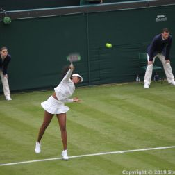 WIMBLEDON NO 1 COURT CELEBRATION, VENUS WILLIAMS 158