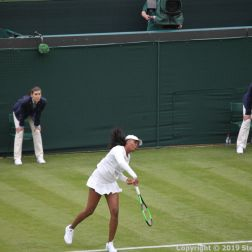 WIMBLEDON NO 1 COURT CELEBRATION, VENUS WILLIAMS 159