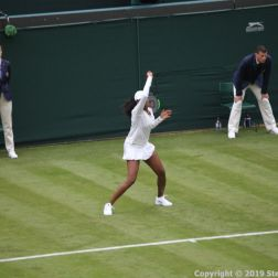 WIMBLEDON NO 1 COURT CELEBRATION, VENUS WILLIAMS 163