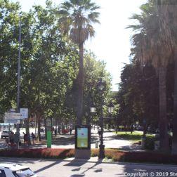 BARCELONA BUS TOUR (BLUE ROUTE) 029