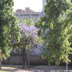 BARCELONA BUS TOUR (BLUE ROUTE) 032