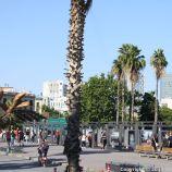 BARCELONA BUS TOUR (BLUE ROUTE) 099