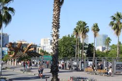 BARCELONA BUS TOUR (BLUE ROUTE) 099