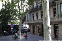 BARCELONA BUS TOUR (RED ROUTE) 081