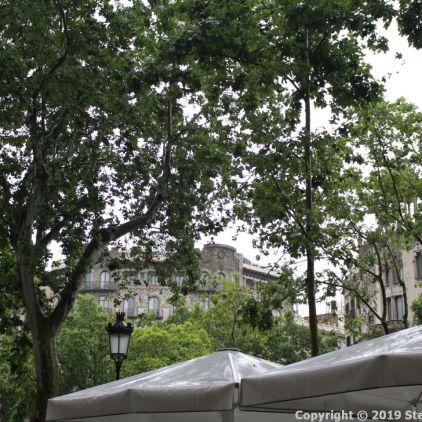 BARCELONA IN THE RAIN 013