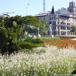PLACA DE CATALUNYA, BARCELONA 014