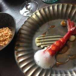 DOP RESTAURANTE, SCARLET SHRIMP, CELERY AND PEARL BARLEY 014