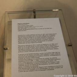 MUSEU NACIONAL DE SOARES DOS REIS 019