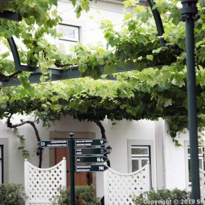 TAYLOR'S PORT HOUSE 005