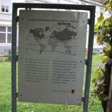 FREIBURG 133