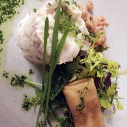 HOTEL KASTEEL BLOEMENDAL, RILLETTE OF COD WITH DUTCH SHRIMPS, SPRING ROLL WITH ORIENTAL VEGETABLES, SESAME CREAM 008