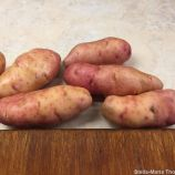 BANQUIST, THOMAS FRAKE, PINK FIR POTATOES 016