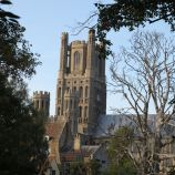 ELY CATHEDRAL 115